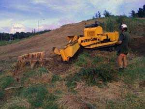 Stump-Removal-Company