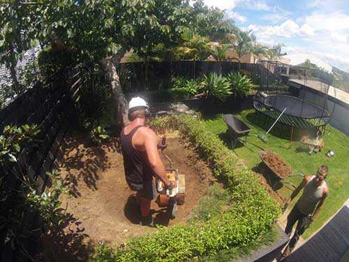 Stump-tree-service