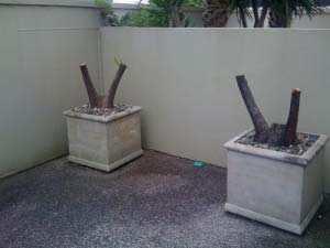 stump-grinder