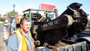 stump grinding services