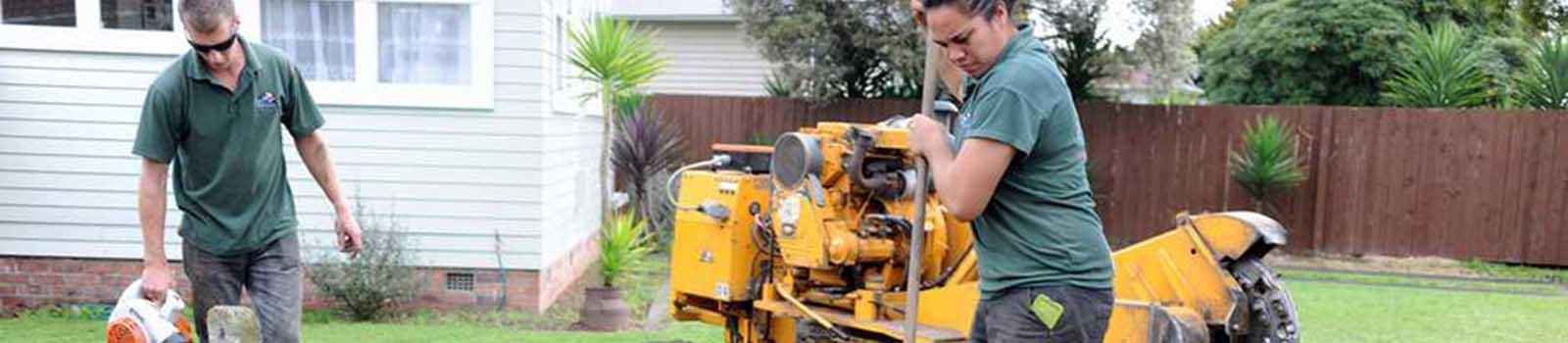 Lifestyle Property Stump Grinding Service