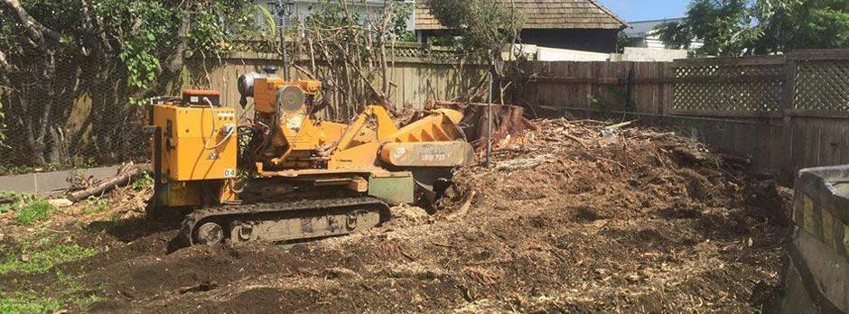 Small Stump Removal Service