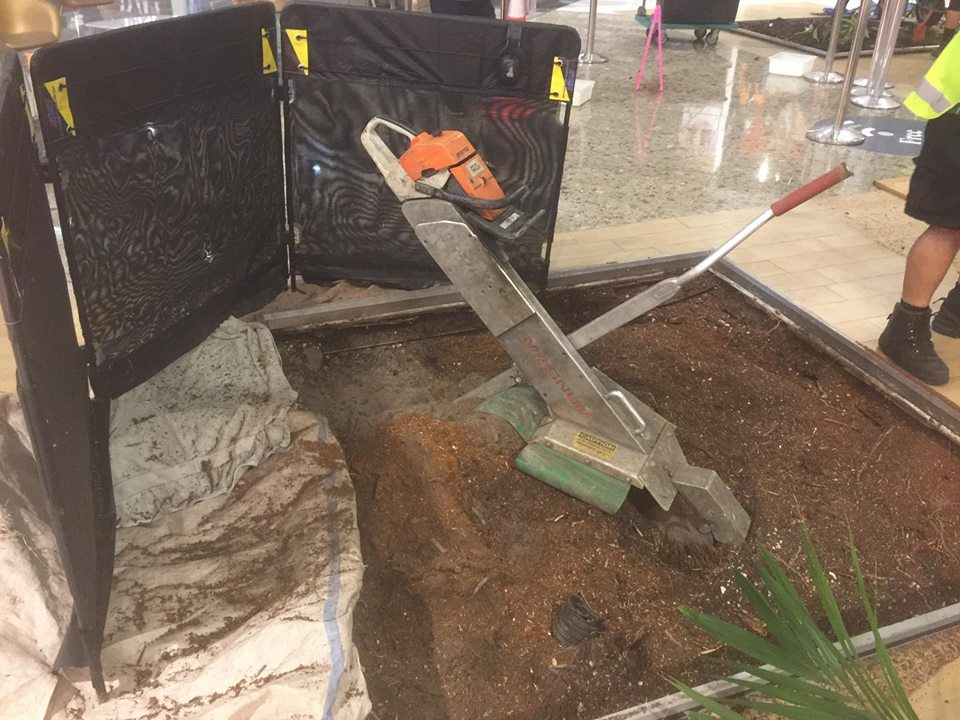 Commercial Stump Grinding and Tree Removal