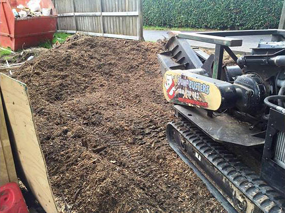 Removing Small Tree Stumps Stump Busters